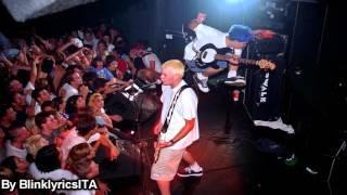 Blink-182 - Carousel Traduzione ITA