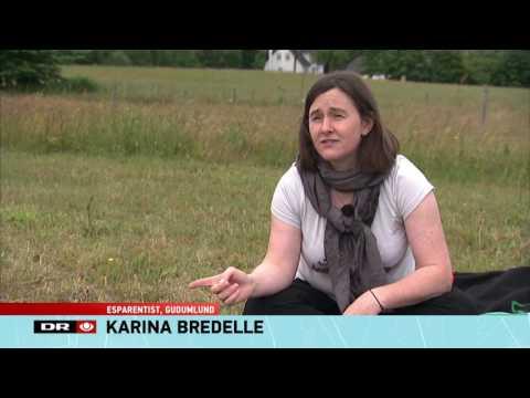 Esperanto ĉe la danaj TV-novaĵoj / Esperanto i dansk TV nyheder