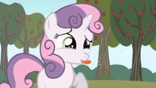 Pony Toon Adventures