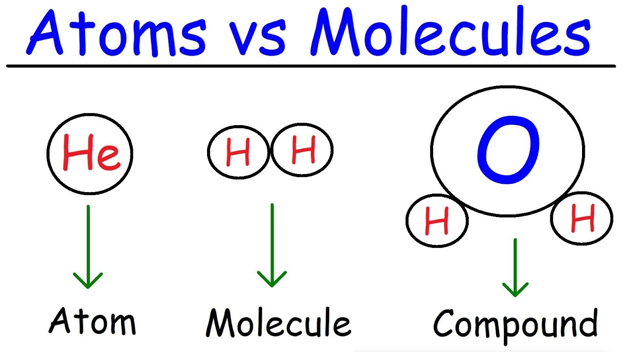 elements  atoms  molecules  ions  ionic and molecular