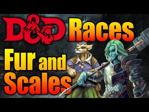 D&D Races 5e Fur and Scales - Tabaxi and Triton What Character Class Should You Play