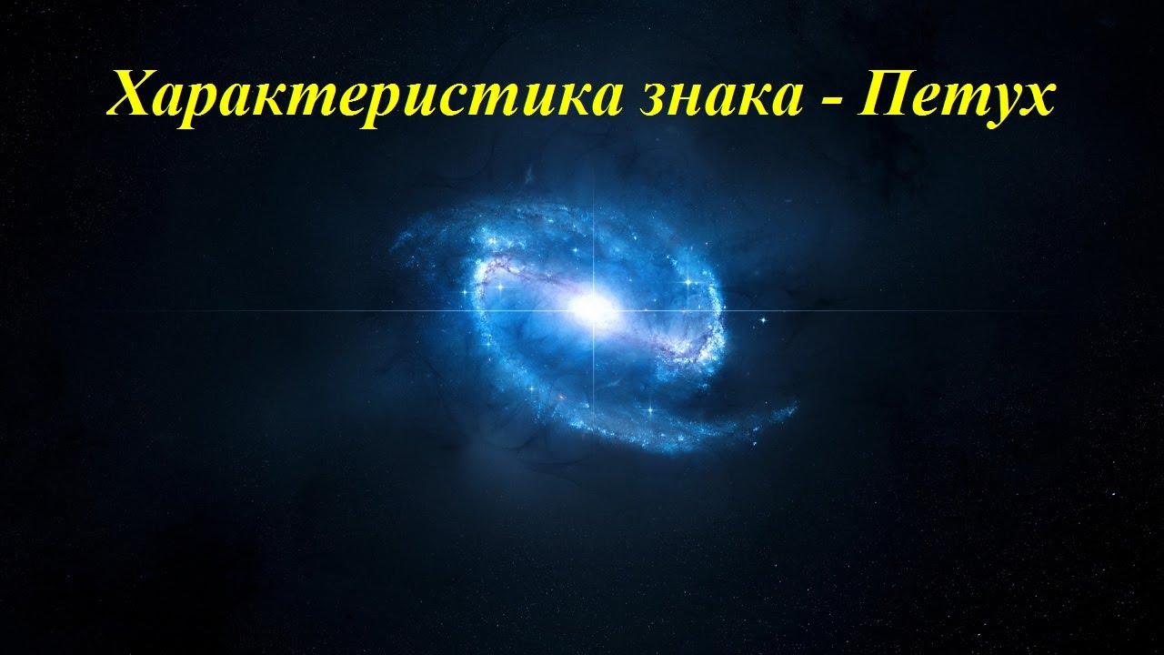 Характеристика знака - Петух