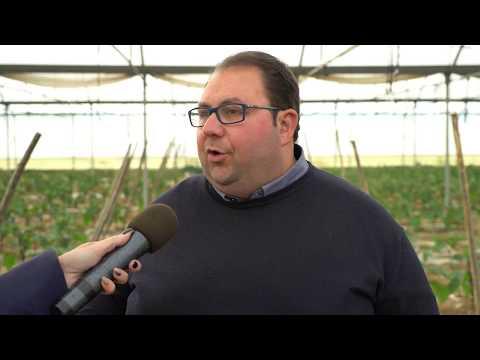 """""""L'agricoltura: traino della nostra economia"""""""
