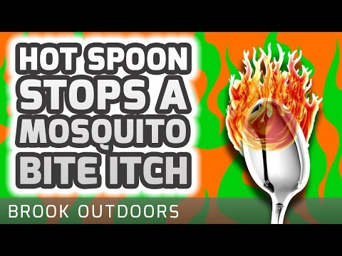how to stop mosquito bites at night