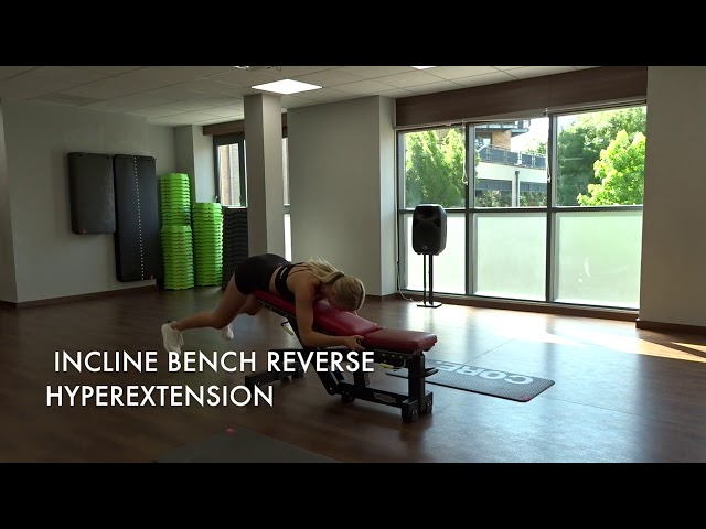 Incline Bench Reverse Hyperextension