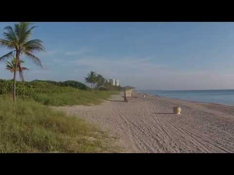 DJI00100 Hlywd Bch Palm Tree Crash RAW FOOTAGE   Flt 49
