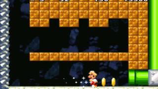 New Retro Mario Bros - Ddog