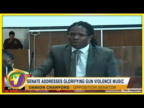 Senate Addresses Glorifying Gun Violence Music   TVJ News - June 18 2021