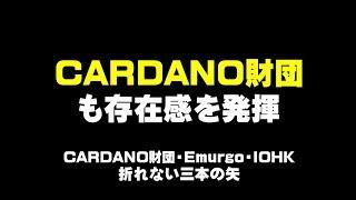 CARDANO財団 も存在感を発揮      仮想通貨ADAで億り人を目指す近未来戦士ヒロミの暗号通貨ライフ