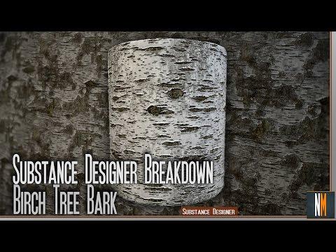 Substance Designer Breakdown - Birch Tree Bark - Twitch Stream