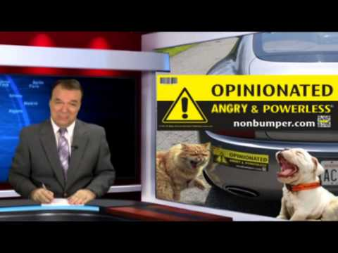 News Flash and Peoples Reaction on the NonBumper Sticker