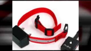 Training Shock Collar