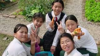 Publication Date: 2020-04-24 | Video Title: 上水東莞學校簡介