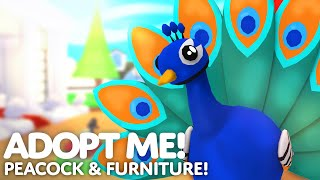 🤩 Peacock and Retro Furniture Update! 🦚 NEW PET! NEW FISHY FURNITURE! NEW HOME!🐟 Adopt Me! on Roblox