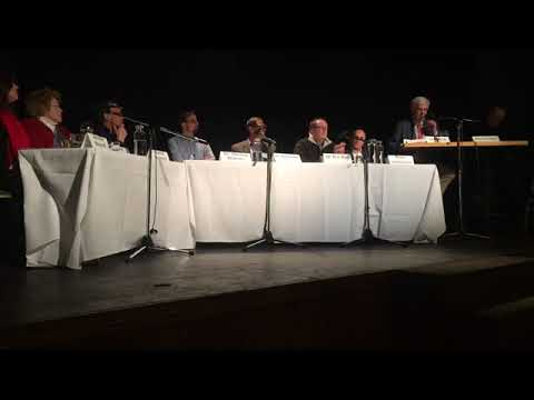 First part of Causes panel - 12/13/17