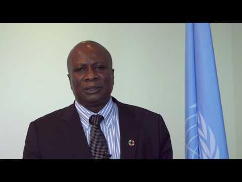 Humanitarian Coordinator to Nigeria on CERF funds