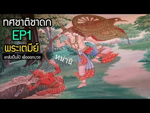 ทศชาติชาดก ชาติที่ 1 พระเตมีย์ใบ้ เนกขัมมะบารมี อดีตชาติของพระพุทธเจ้า นิทาน ฟังก่อนนอน| สุริยบุตร