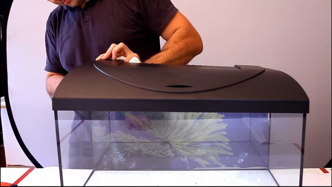 aquarium rückwandfolie kleben