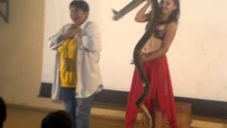 Выступление со змеёй