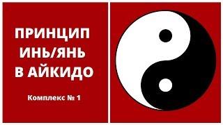 100 уроков айкидо с Игорем Дмитриевым.  Принцип Дао.  Комплекс №1