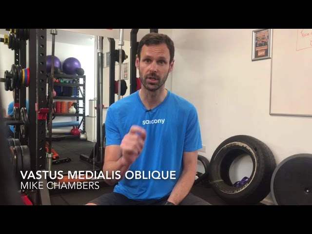 Vastus Medialis Oblique