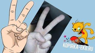 Illustrator - рисуем по фотографии руку | Видеоуроки kopirka-ekb.ru(Как в иллюстраторе нарисовать реалистичную руку по фотографии. Смотрите так же: http://www.youtube.com/watch?v=MEY-gZh8h88&index=2..., 2015-01-19T17:52:02.000Z)