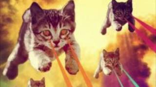 Chaton laser (invasion of laser kitten from outer space)