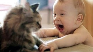 cute cats and dogs love babies