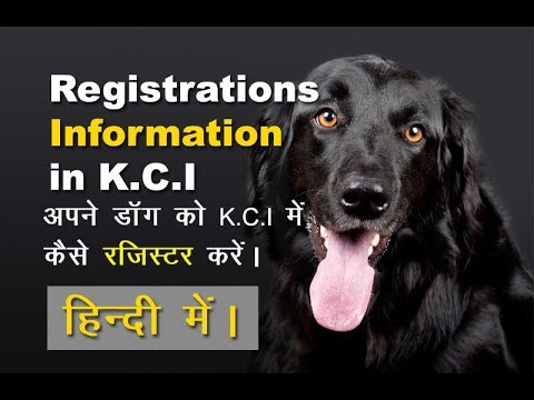Apne dog ko KCI (Kennel Club of India) me Kaise Register Kare | How to Register Dog in KCI