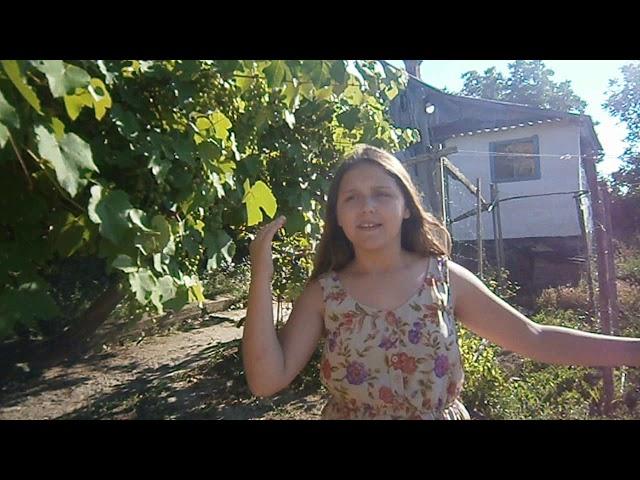 Изображение предпросмотра прочтения – ВикторияСемилетова читает произведение «Деревня» А.А.Фета
