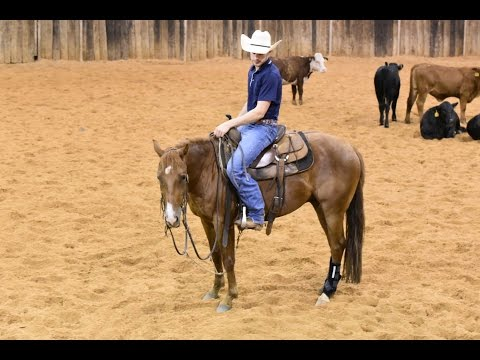 ROCKIN SMART - 2012 Sorrel Gelding by Rockin W in training with Jesse Lennox