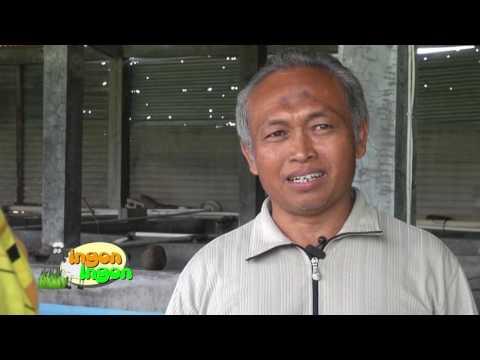 Ingon - Ingon MTA TV  -  ZIDAT 1/3