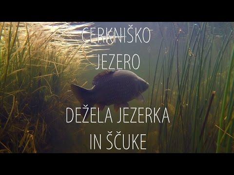 Cerkniško jezero, dežela Jezerka in ščuke.