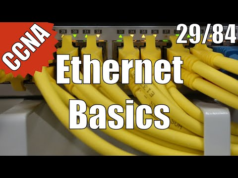 CCNA/CCENT 200-120: Ethernet Basics 29/84 Free Video Training Course