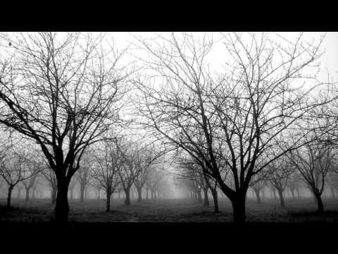 Miaou - Silent Picture