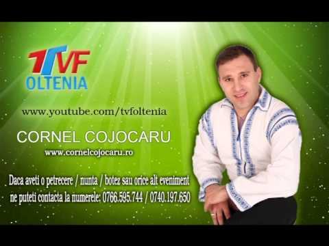 Cornel Cojocaru - Nu sunt bogat, n-am avere LIVE - 2014-2015