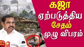 Cyclone Gaja Wreaks Havoc in Tamil Nadu tamil news live