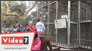 حديقة الحيوان تستقبل زوارها تزامنا مع ذكرى 25 يناير وأعياد الشرطة