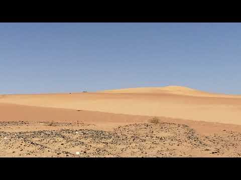 Dubai | Dubai Desert Conservation Reserve | desert road to Al Maha resort.