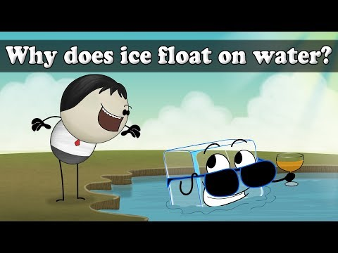 Why Does Ice Float? | #aumsum