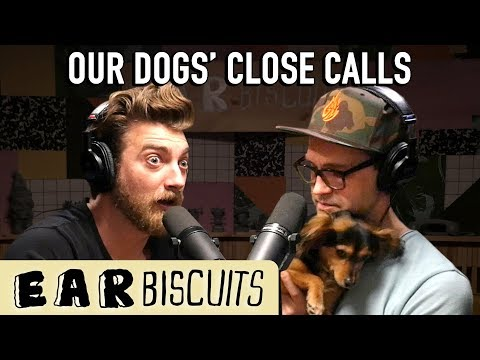 What If Our Dogs Died?