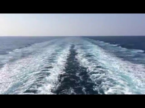 LNG Carrier Twin Skeg Wake
