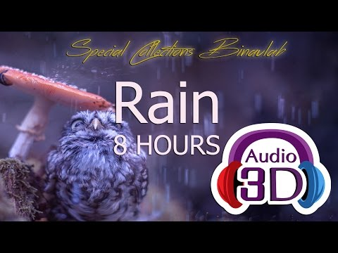 RAIN 8 HOURS - 3D Audio -  SPECIAL COLLECTIONS