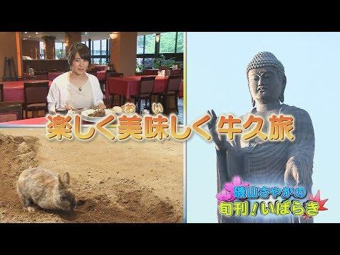 磯山さやかの旬刊!いばらき『牛久観光』(平成29年5月26日放送)
