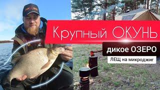 Рыбалка Крупный ОКУНЬ дикое Озеро ЛЕЩ на микроджиг сентябрь 2021