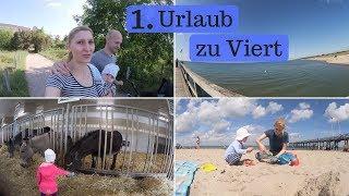 Pfingsten am Weißenhäuser Strand  - Eselhof - Family Vlog - AllesClärchen