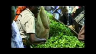 Kenyan Tea by KenyanSandals.com