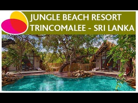 Jungle Beach Resort Trincomalee Sri Lanka Youtube