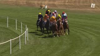 Vidéo de la course PMU PRIX JACQUES DE BREMOND