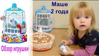 машеньке 2 года и обзор птички Little Live Pets S2 Bird Cage